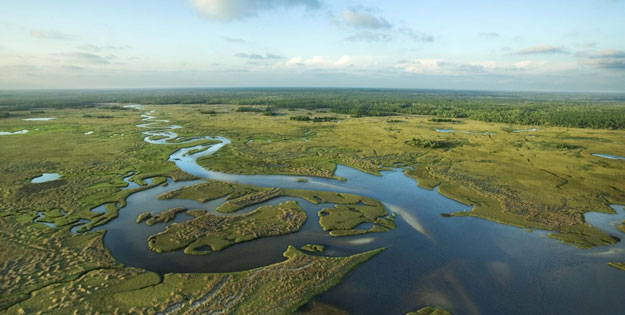Miami-und-Everglades